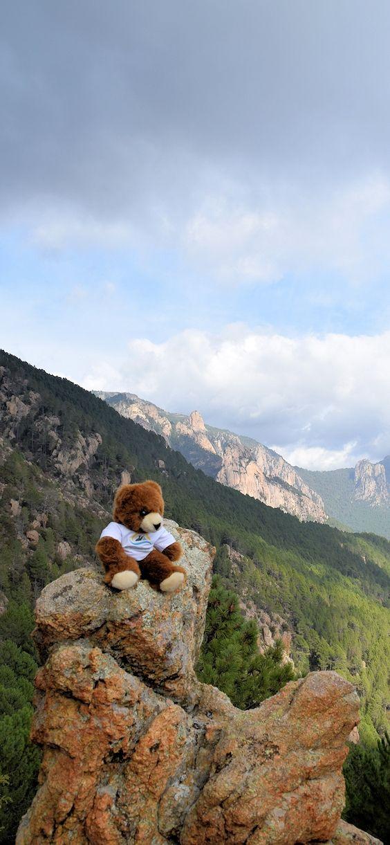 Der Urlaubär auf Korsika am Gebirgspass Col de Bavella ... #frankreich