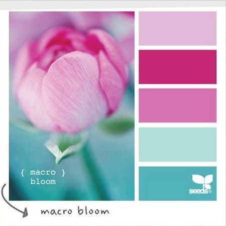 Colors That Go With Pink Classy Best 25 Nursery Color Schemes Ideas On Pinterest  Girl Nursery Design Inspiration