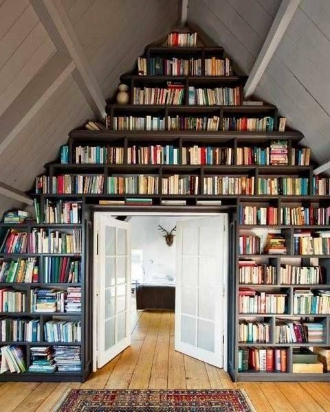 Bookcase inspiration. This one would definitely need a sliding later to access them all.