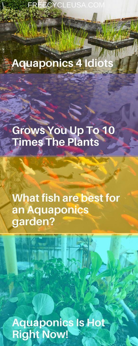 1132 best images about garden aquaponics on pinterest for Fish aquaponics garden