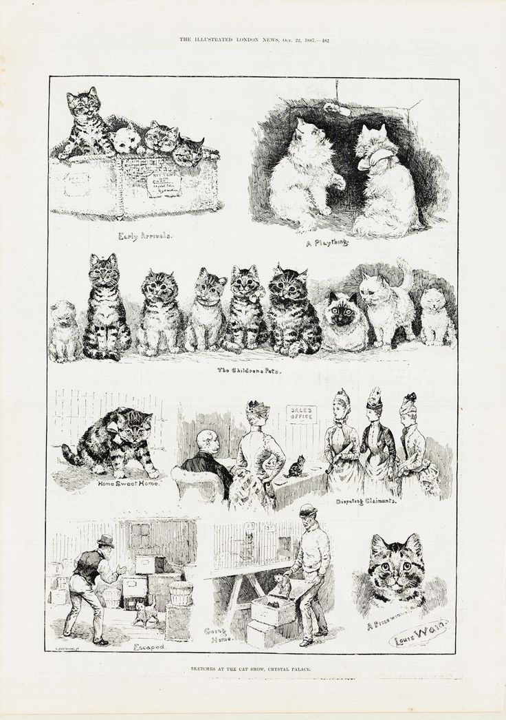 Louis Wain Sketches at the cat show Oct 22 1887 Louis