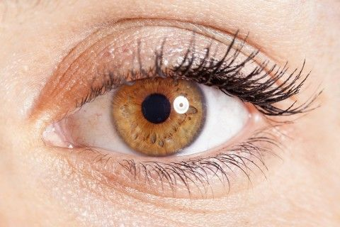 Glaucoma Natural Treatment and Prevention (including some essential oils).   ~ Interested in PURE™ Essential Oils?  Let's Connect!  Email me at livegreenwithginny@gmail.com  #PURE™ #EssentialOils #Melaleuca #Glaucoma #Natural