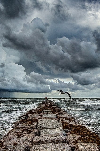 Walk out to the pier while the Texas weather changes. Galveston Tx www.pughproperties.com