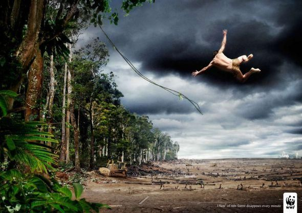 15 square kilometers of rain forest disappears every minute - World Wildlife Fund ad @wwfus