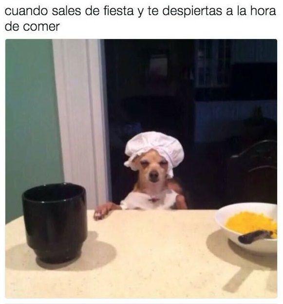 Pin De Daniel Carrasco En Humor Memes Y Mas Memes Graciosos Memes Chistosos En Espanol Memes Geniales