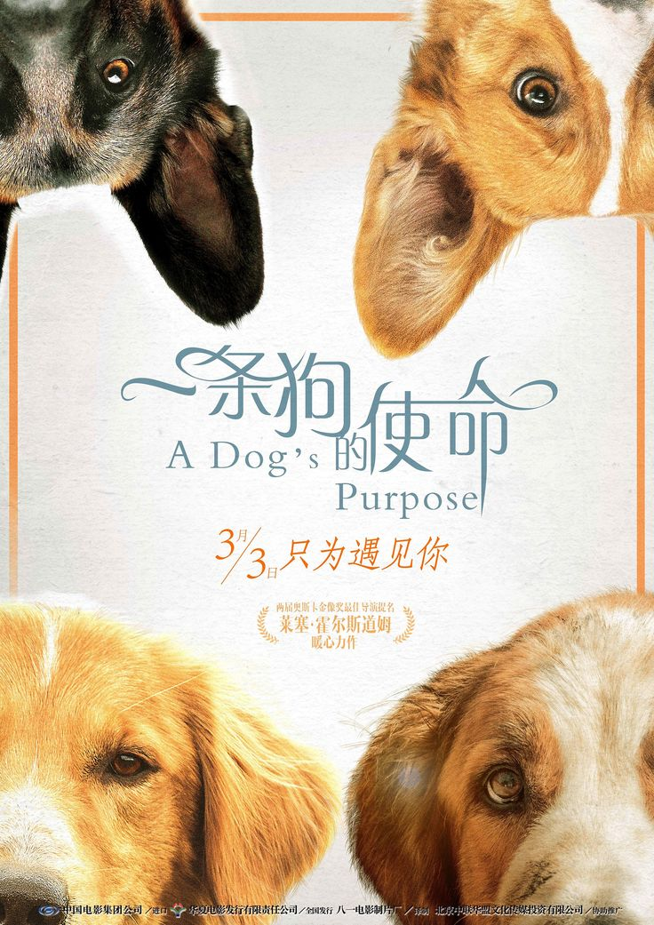 Return to the main poster page for A Dog's Purpose (#11 of 13)