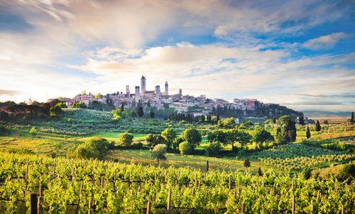 Toskánsko si zamilujete na první pohled. Díky bohaté historii můžete objevovat středověká města, poznávat renesanční umělecká díla a užívat si krásných vinic.
