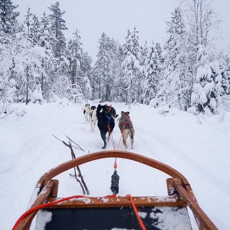 Underdog #ImagineDragons  Location  #Rovaniemi  Photo  #ElectraAsteri