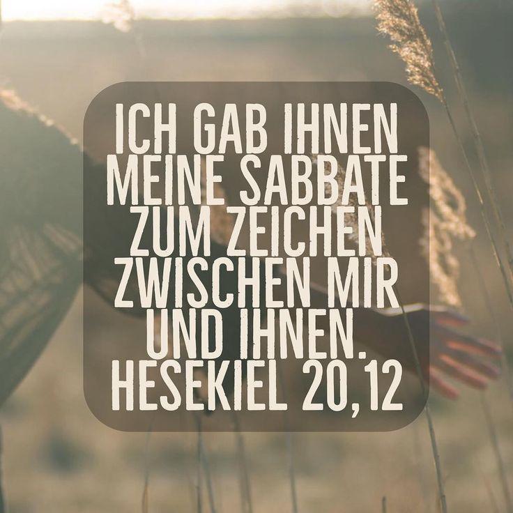 Ich wünsche euch einen schönen Tag heute liebe Community! :)  @glaubensimpulse @grenzenlosgeliebt @g8dnews @gottxistxgross #evangelisch #evangelium #kirche #glaube #gott #jesus #christus #bibel #worte #hoffnung #spruch #bibelvers #love #losung #losungen #tageslosung #glaubensimpuls #glaubensimpulse #gottistgut #motivationalquotes #motivation #dailymotivation #instagood #0711 #stuttgart #begood