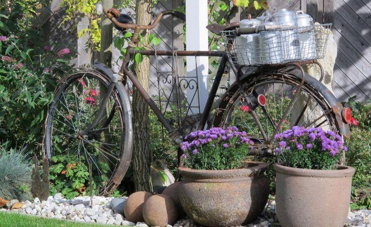 Das alte Fahrrad ist zwar schon länger im Ruhestand, aber als Deko ein wahres Schmuckstück. Ergänzt wird das Gesamtbild durch den Korb voller Milchkannen und den lilafarbenen Astern