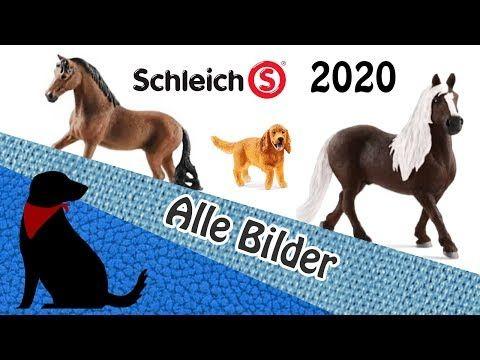 Schleich Neuheiten 2020 Mit Bildern Ohne Dinos Und Eldrador Youtube Schleich Pferde Tiere Hund Pferde