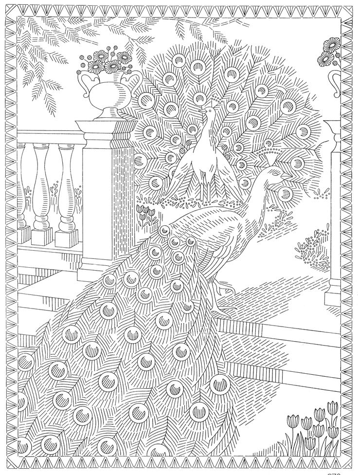 http://qisforquilter.com/wp-content/uploads/Laura-Wheeler-Transfer-978-Peacocks.jpg