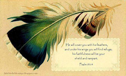 Psalms 91:4