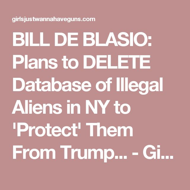 BILL DE BLASIO: Plans to DELETE Database of Illegal Aliens in NY to 'Protect' Them From Trump... - Girls Just Wanna Have Guns