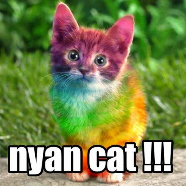 Best 25+ Nyan cat ideas on Pinterest | Nyan cat original ...