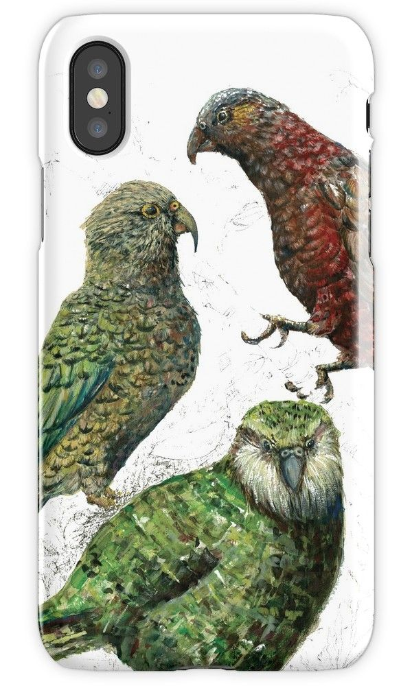 Three native parrots of New Zealand by EmilieGeant