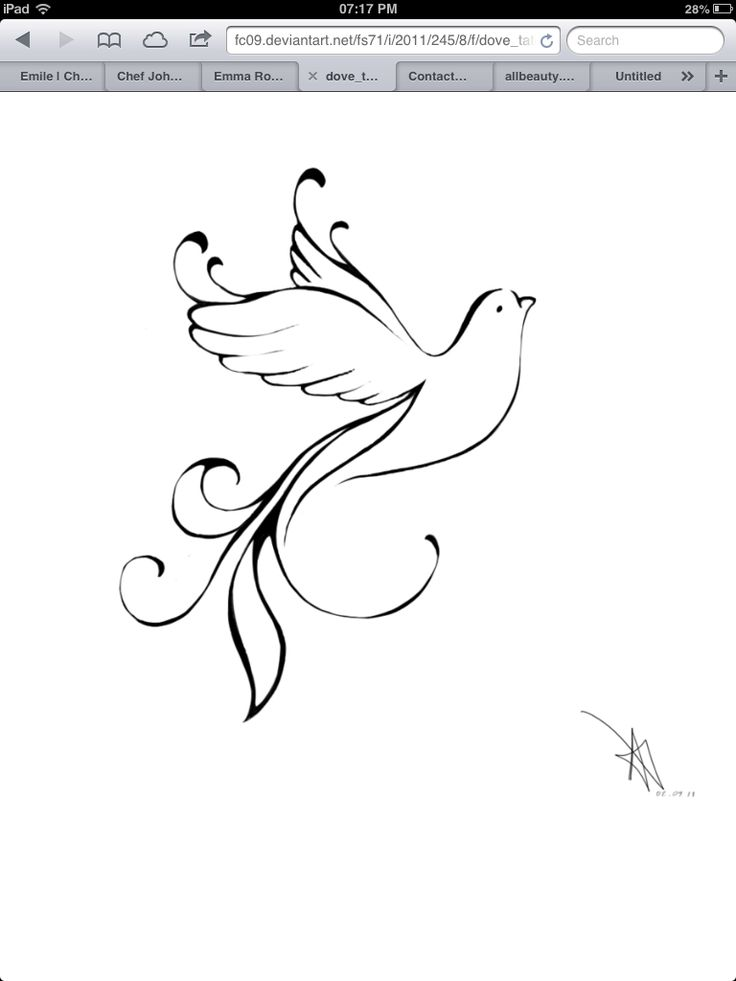 "Dove tattoo design - hope (Holy Spirit). This is my favourite and the next one I'm thinking of getting next summer. I want to have ""hope"" written on the far right tail feather. Love this design."