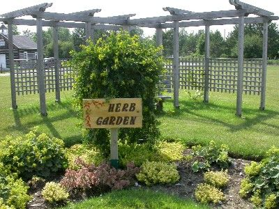 The 25+ best Small herb gardens ideas on Pinterest | Patio ...