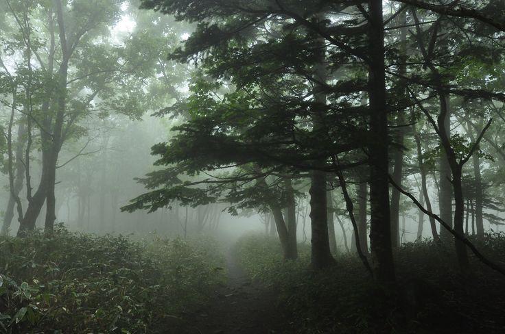 https://flic.kr/p/uCL4GT | _DSC873600 | World natural heritage Siretoko, Hokkaido, Japan  [Shir-etok] means Top of the land in Ainu language