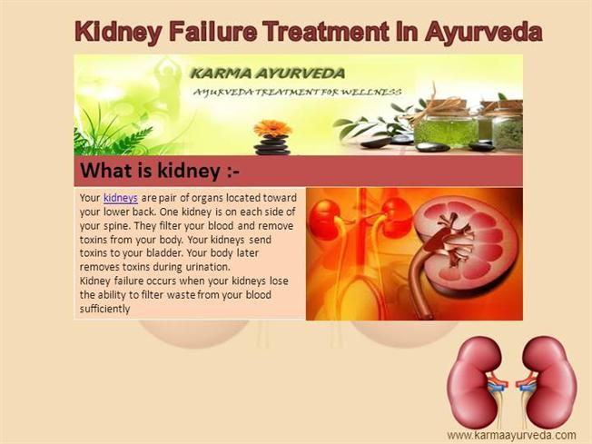 #Kidney #Failure #Treatment In #Ayurveda by karma462708 via authorSTREAM