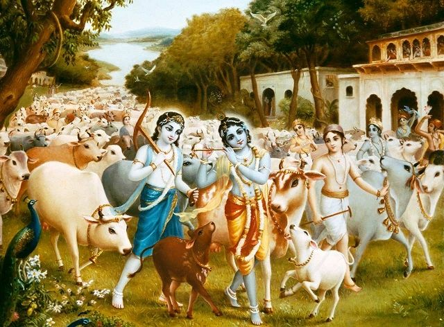A collection of enchanting images of Lord Krishna.