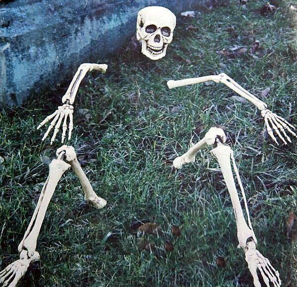 Skeletteile Rasendekoration HALLOWEEN Deko