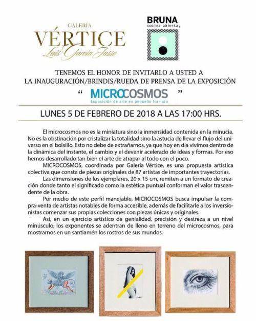 Exposición colectiva MICROCOSMOS.  A partir de hoy 5 de Febrero a las 17:00 hrs. Lerdo de Tejada 2418, Col. Lafayette, Guadalajara, Jal.
