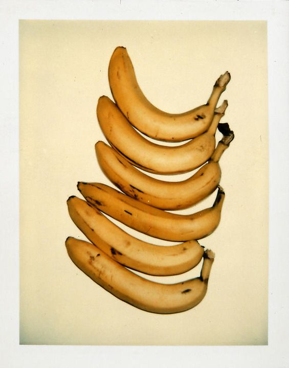 Peaches, Pears and Plums Polaroids by Andy Warhol, 1978-1982