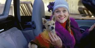 Image result for legally blonde movie Legally Blonde.. even the dog had outfits