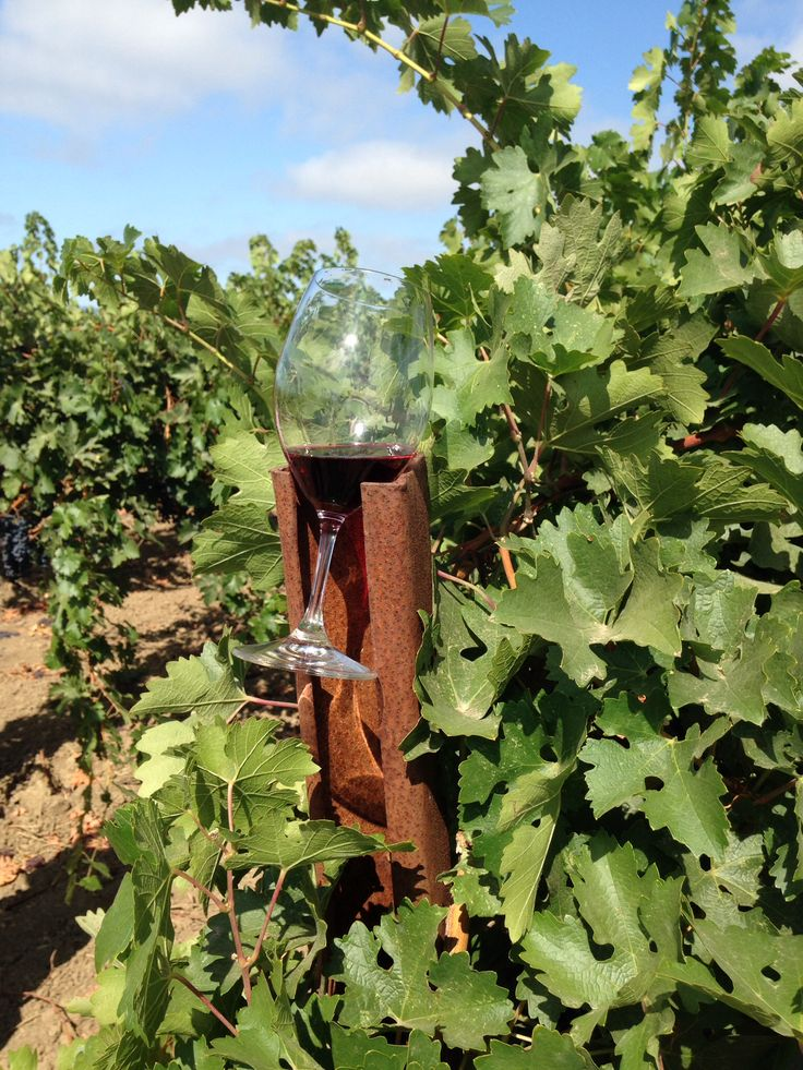 56 Best Napa Images On Pinterest Valley California California Wine And Vineyard