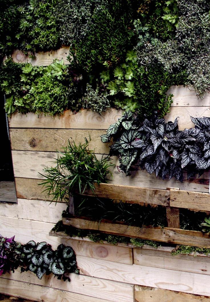 Estanterías con arreglos de plantas hechas con palets de madera. Propuesta de Espacio Fronda para Casa Decor Madrid 2012: Plant, The Garden, Arrangement, The Terrace, Contenedor Para, Con Palet, Wood, Con Arreglo, Pallet