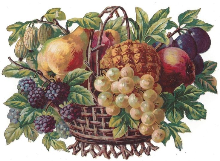Victorian Die Cut Scraps Luscious Basket of Fruit