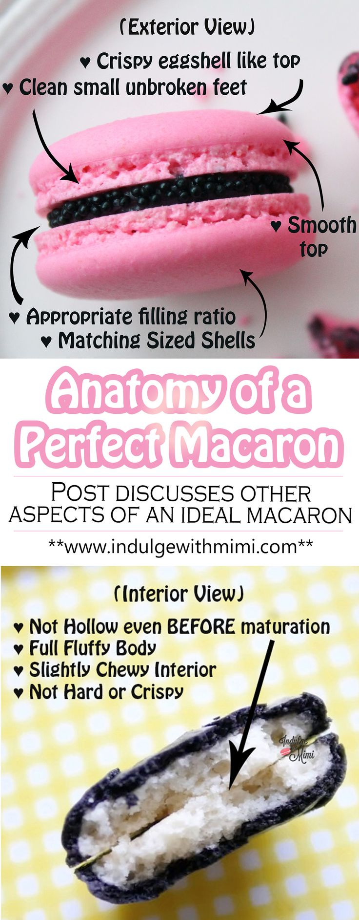 Perfect Macaron Anatomy - post on ideal macarons and how to achieve it
