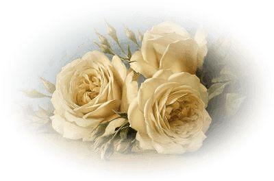 ZOOM DISEÑO Y FOTOGRAFIA: 30 rosas vintage para scrap, rose png: Artigor Levashov, Rose, Poster Frame-Black, Art Paintingsprint, Art Prints, Paintingsprint Vari, Levashov Art, Flower, Ivan Prints