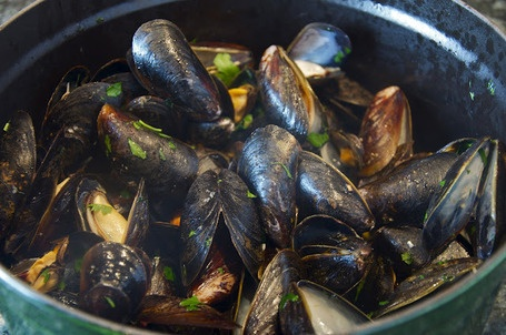 Sautè di cozze - Steamed Mussels