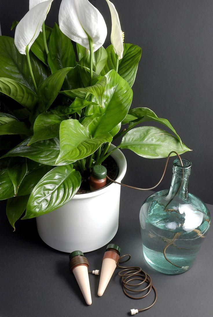 Conos de cerámica microporosa que suministran agua a la planta en la medida que lo necesite. Sin electricidad ni programador de riego.   No pidas  más que te rieguen las plantas!!