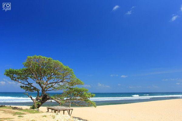 Pok Tunggal Beach, Gunungkidul Yogyakarta