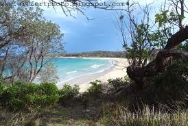 South Durras Beach NSW...staying here is amazing, the wildlife and peace is just beautiful
