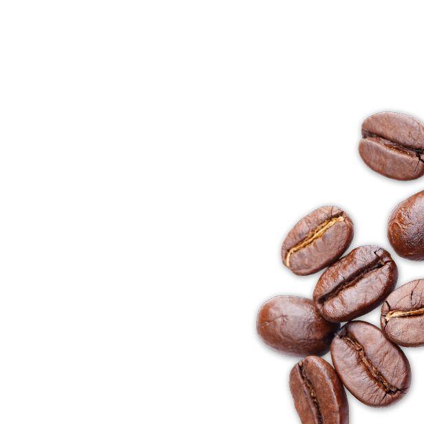 Bio Kräuter, Tees und Gewürze online kaufen im Webshop - SONNENTOR.com