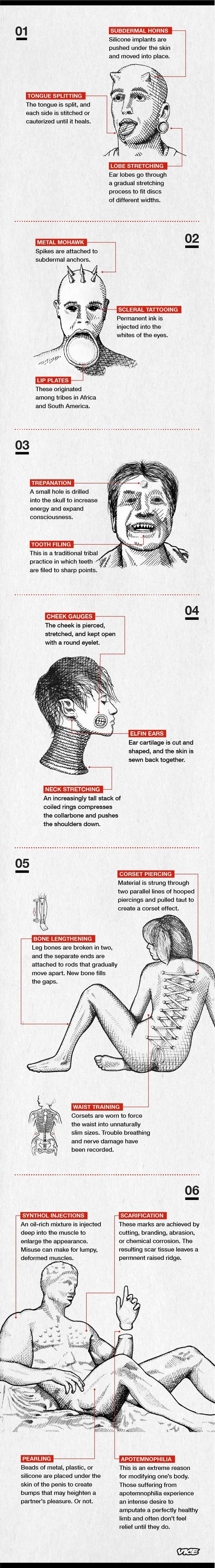 A Breakdown of Extreme Body Modification | VICE | United States