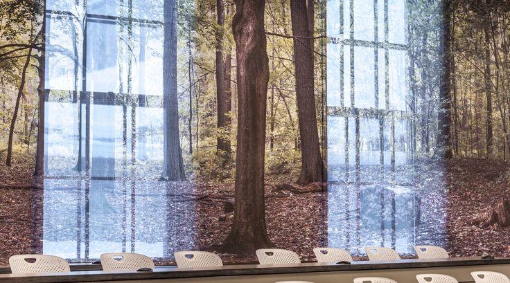 """Amphithéâtre """"La clairière des arts"""" de la Faculté des arts de l'Université McGill Les traces de l'histoire..."""