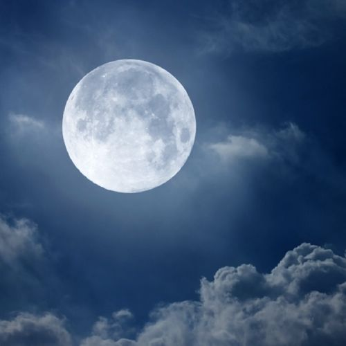 Moon Garden by Jacek Tabisz on SoundCloud