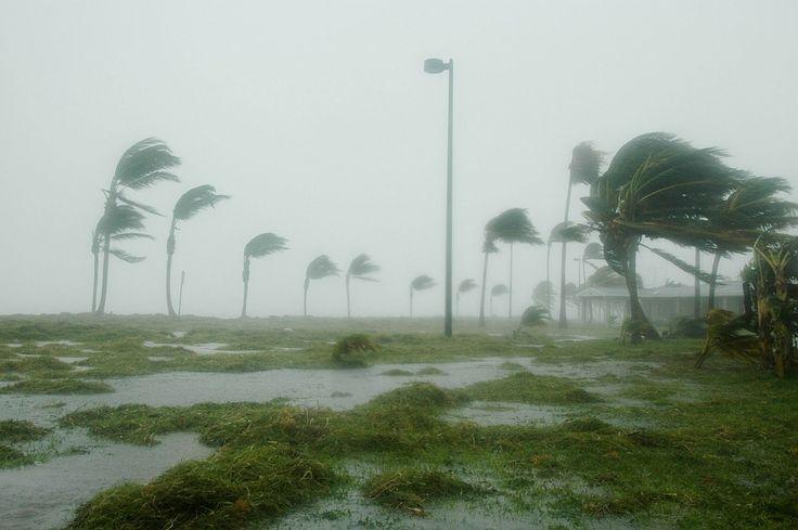 Vinculan el clima extremo con el calentamiento global - https://www.meteorologiaenred.com/vinculan-el-clima-extremo-con-el-calentamiento-global.html