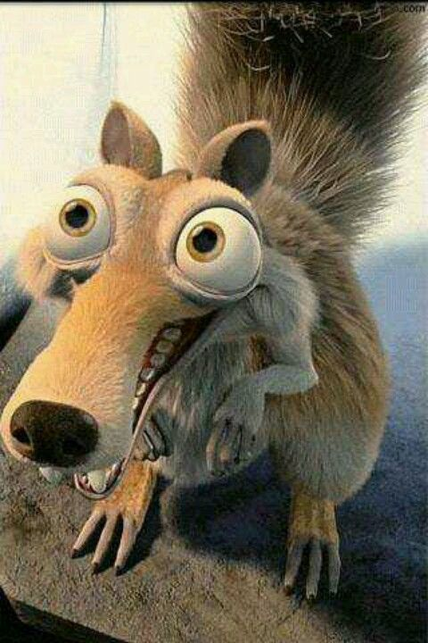 Scrat the squirrel from ice age movies