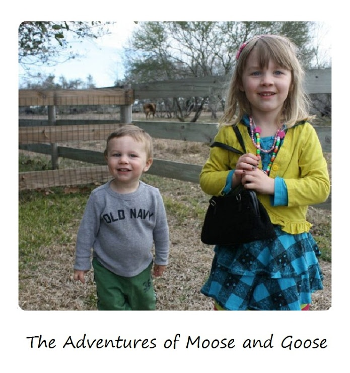 The Adventures of Moose and Goose