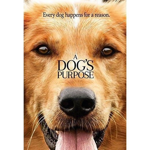 A Dog S Purpose Free Streaming