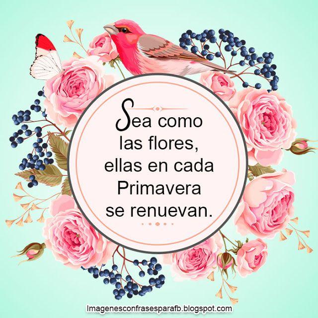 20 Frases de la Primavera - consejo lindo para vivir la primavera, es  tiempo de florecer. #Flores #Frase… | Frases de primavera, Frases de  flores, Frases feliz dia