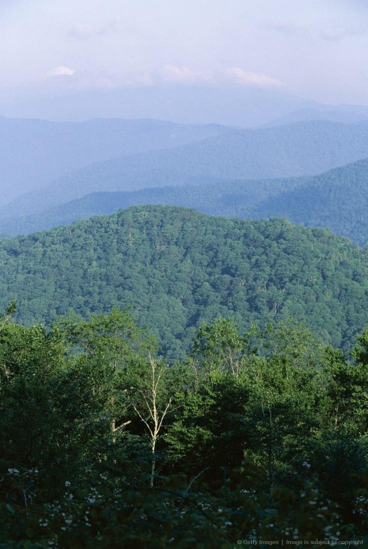 appalachian blue ridge mountains wallpaper - photo #23