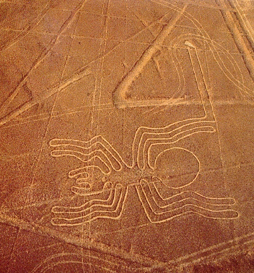 Peruvian Nazca Lines - Spider