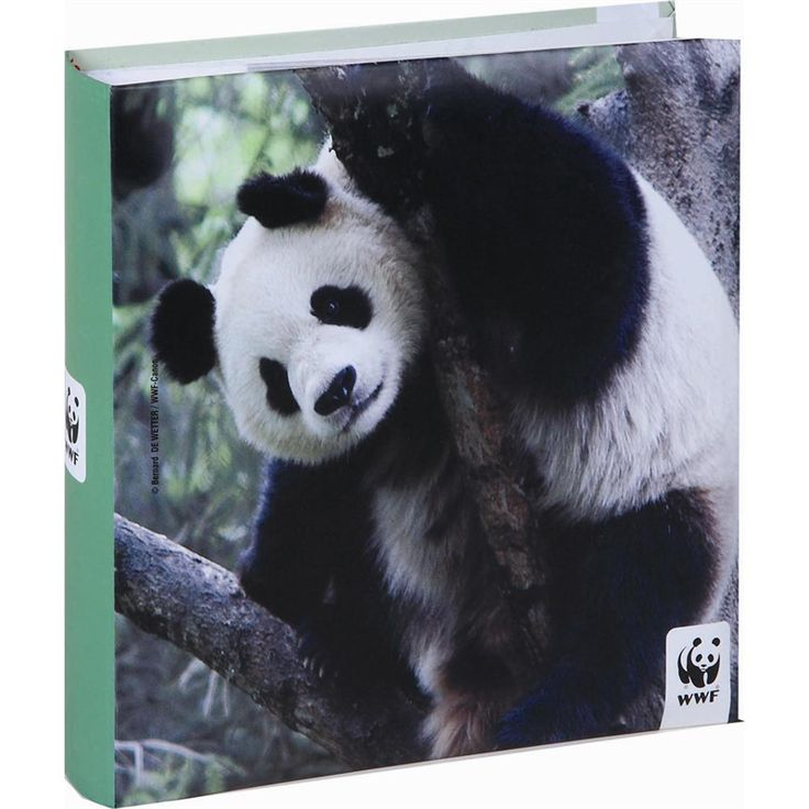 Photo album with pockets / 6 designs|wwf.gr  Bookbinded photo album, with photo pockets,  40 pages, capacity for 160 photos & special CD pocket on the back page  Dimensions: 10 x15 cm FSC certified paper          Add to basket    Αdd To wishlist     Share on facebook